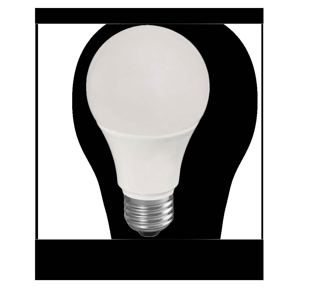 Apariencia de la bombilla Standard LED 9W y 15W